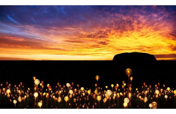 Bruce Munro, Field of Light, Uluru (aprile 2016 -marzo 2017)