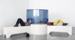 Carsten Holler, Aquarium (1996), Doubt, Hangar Bicocca, Milano (2016)